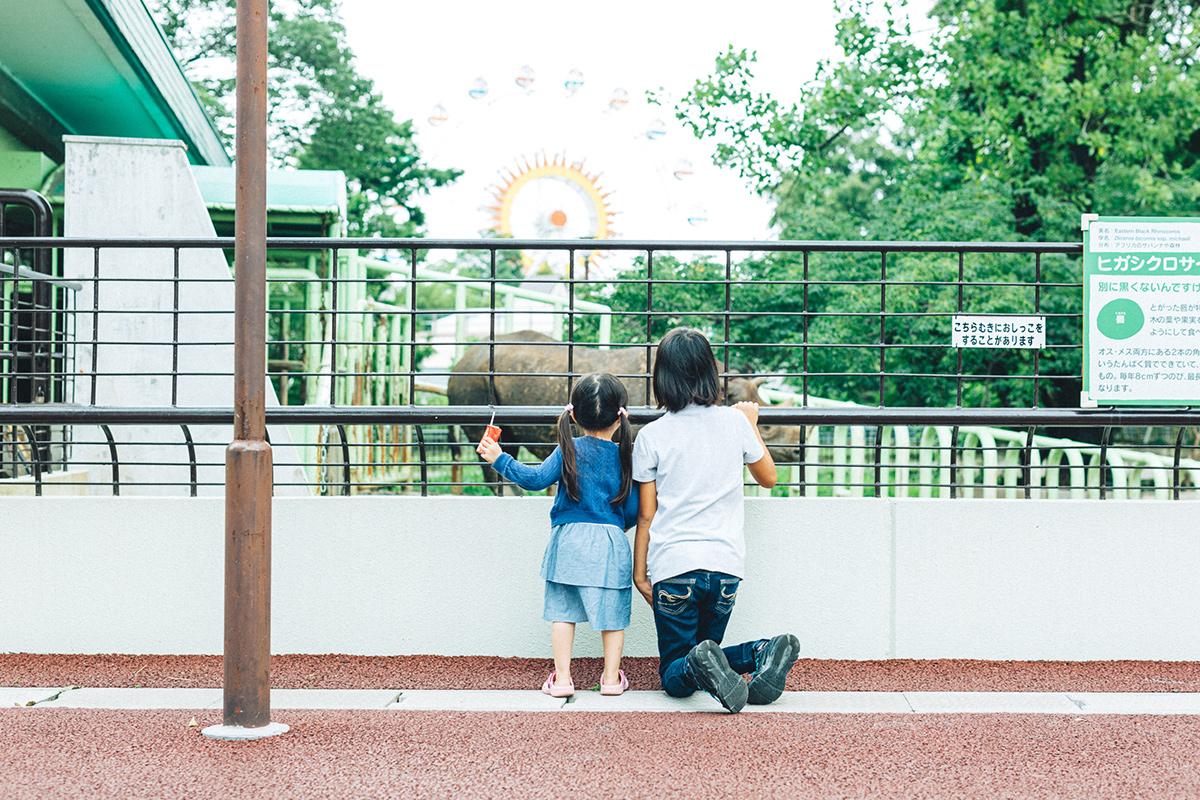 熊本市動植物園でサイをみる姉妹の後ろ姿
