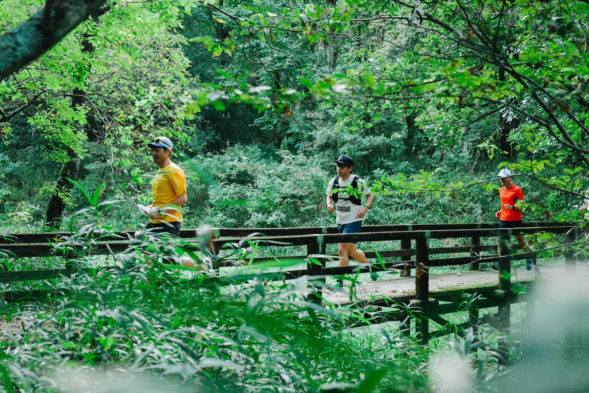 森の中の橋を走って渡る男性たち